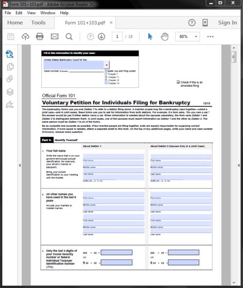 Standard Legal Bankruptcy 101 Form Sample
