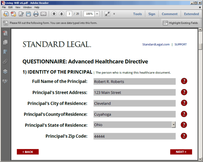 Standard Legal Living Will Q&A form fields
